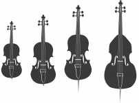 Simply Strings-16